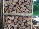 Beech Firewood - photo 3