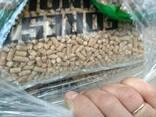 Σφαιρίδια/ wood pellets - photo 4